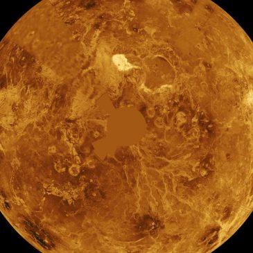 Venus Retrogrado – El Amor en la Mirilla