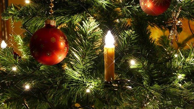 Tu Arbol de Navidad – Un Portal a la Buena Energia